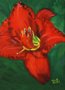 Red Daylily Painting