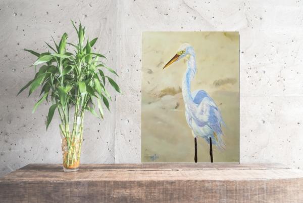 Boca Egret