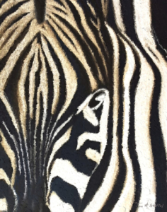Striped Beauty Zebra Print